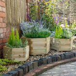 Forest Buttermere Planter Set of 3