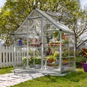 6x4 Palram Harmony Silver Polycarbonate Greenhouse with Base