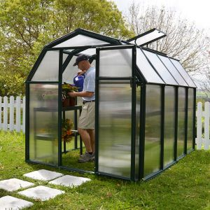 6'x8' Palram Canopia Rion EcoGrow Green Greenhouse with Resin Frame