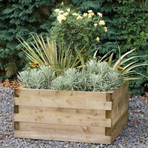 Forest 90 x 90cm Caledonian Raised Bed