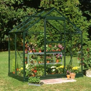 4x6 Green Frame Large Paned Toughened Glass Greenhouse