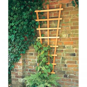Forest Fan Trellis