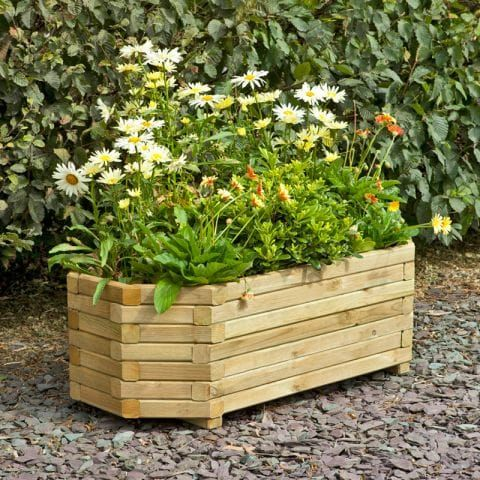 6 Top Tips for Container Gardening
