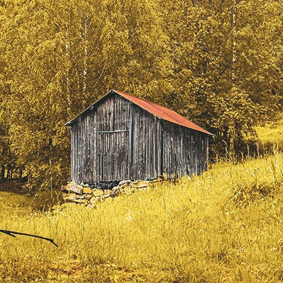How Do I Hide My Garden Shed?