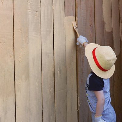 Shed Painting Ideas and How to Create a Themed Shed