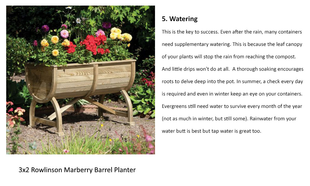 Watering is the key to container gardening success