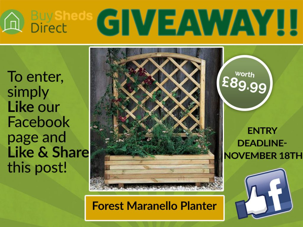 Forest Maranello Planter Giveaway