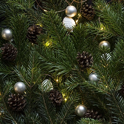 7 Ways to Recycle Your Christmas Tree